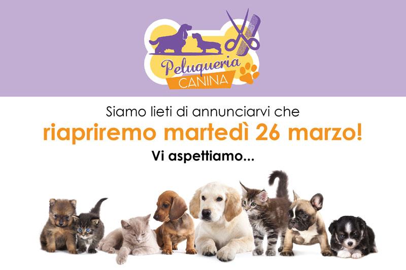 riapertura Peluqueria canina 26 marzo 2019