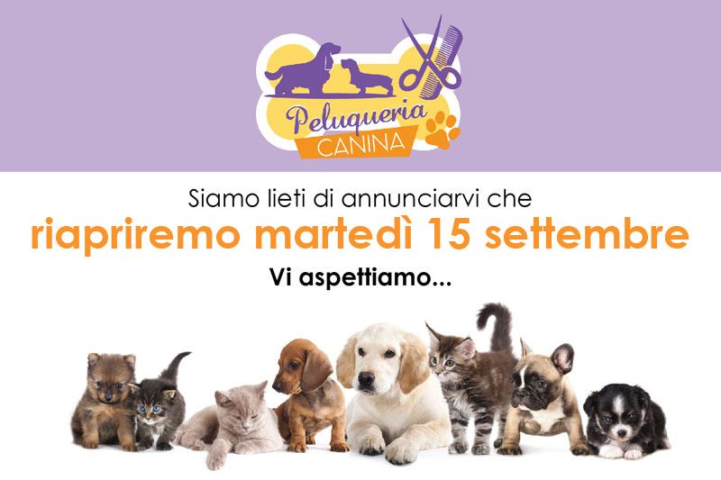 riapertura Peluqueria canina riapertura 15 settembre 2020